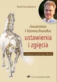 Anatomia i biomechanika ustawienia i zgięcia - Gerd Heuschmann
