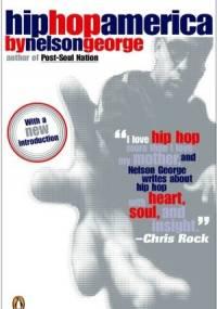 Hip Hop America - Nelson George