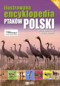 Ilustrowana encyklopedia ptaków Polski - Radziszewski Michał Matysiak Mateusz