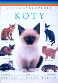 Koty - David Alderton