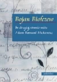 Po drugiej stronie mitu. Adam Bernard Mickiewicz. Pomiędzy aureolą wieszcza i homoludens - Bojan Biołczew