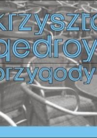 Przygody K - Krzysztof Gedroyć