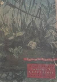 Tajemnica nocy leśnej - Witali Bianki